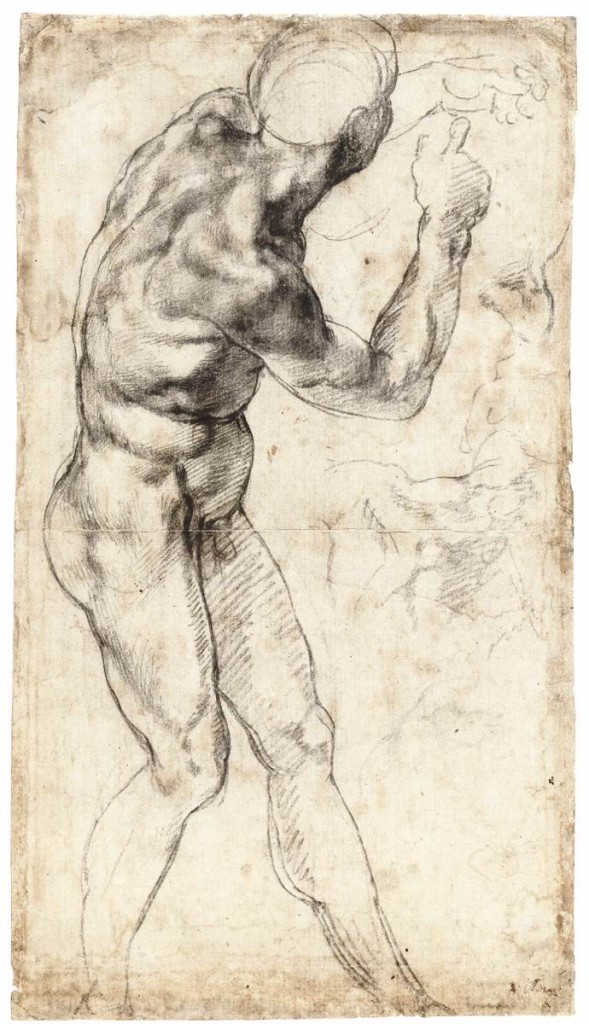 3-13 Michelangelo, A Male Nude, ca. 1504. Black chalk with slight touches of white heightening, 40.4 x 22.4 cm. Teylers Museum, Haarlem.