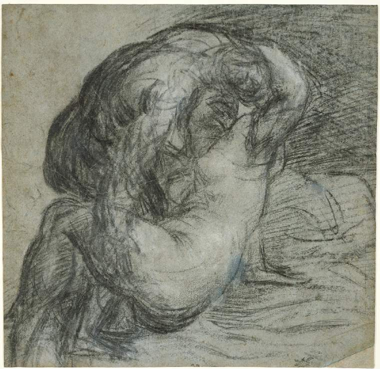 3-34 Titian, Embracing Couple, 1560s. Charcoal and black chalk heightened with white on faded blue paper, 25.2 x 26 cm. Fitzwilliam Museum, Cambridge.