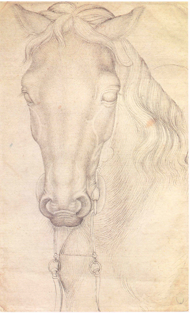 2-7 Pisanello, Head of a Horse, ca. 1434-38. Pen and ink over metal- or leadpoint, 26.8 x 16.8 cm. Louvre Museum, Paris.