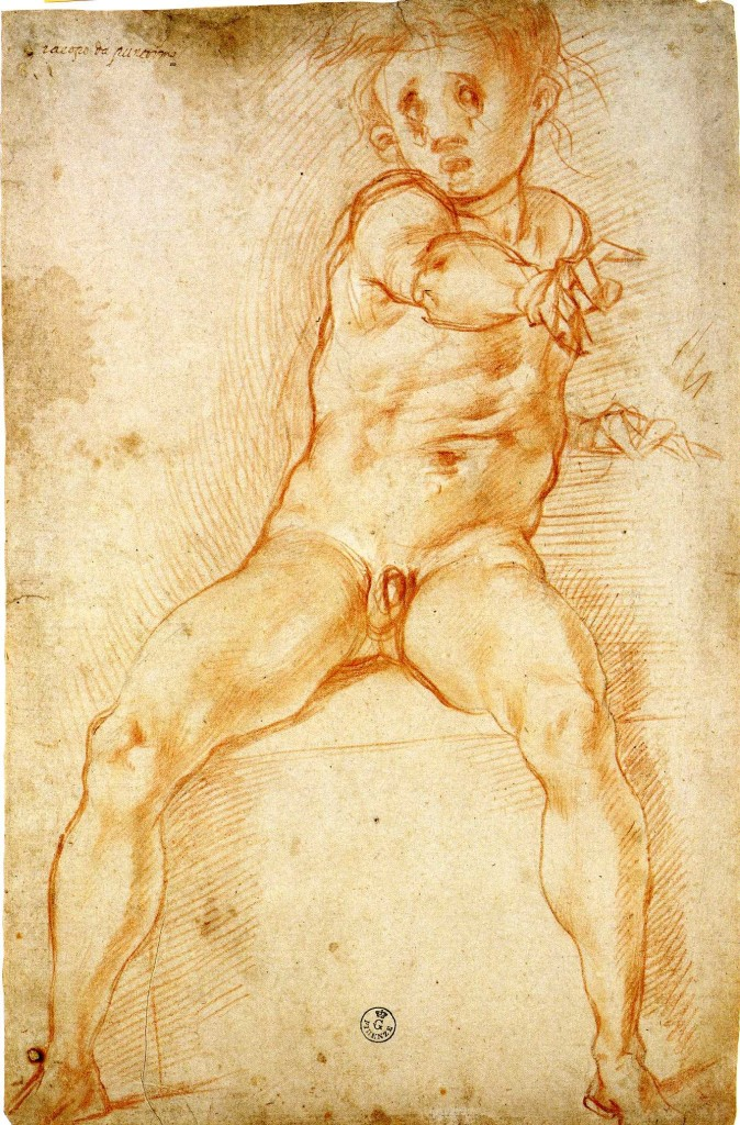 3-27 Pontormo, Study for Vertumnus and Pomona, 1519-1521. Red chalk over faint black chalk, 40.5 x 26.2 cm. Uffizi, Florence.