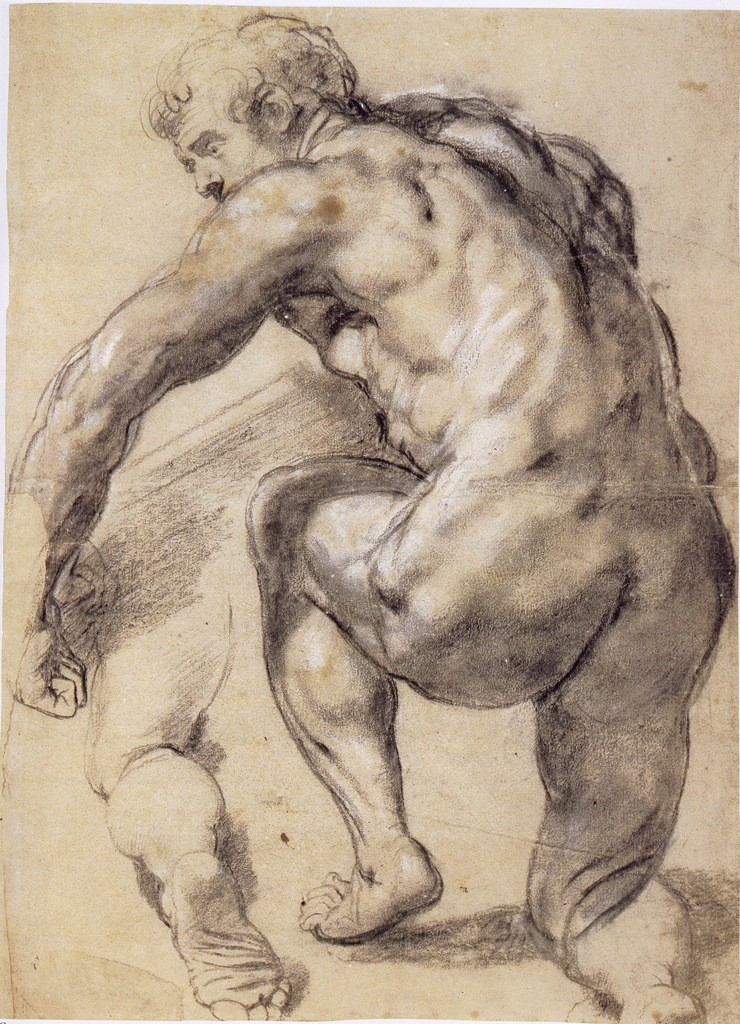 4-30 Peter Paul Rubens, Kneeling Male Nude Seen from Behind, ca. 1609-10. Black chalk heightened with white, 52 x 39 cm. The Museum Boijmans Van Beuningen, Rotterdam.