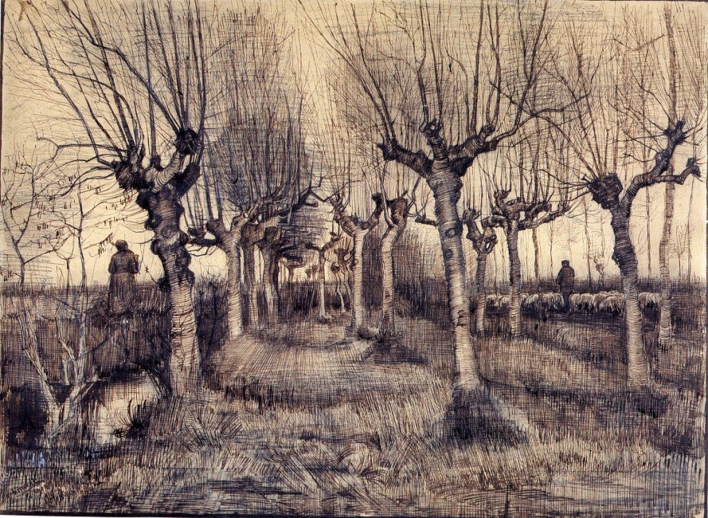 6-44 Vincent Van Gogh, Pollard Birches, 1884. Pencil, pen and ink, heightened with white, 39 x 54 cm. Amsterdam, Van Gogh Museum.