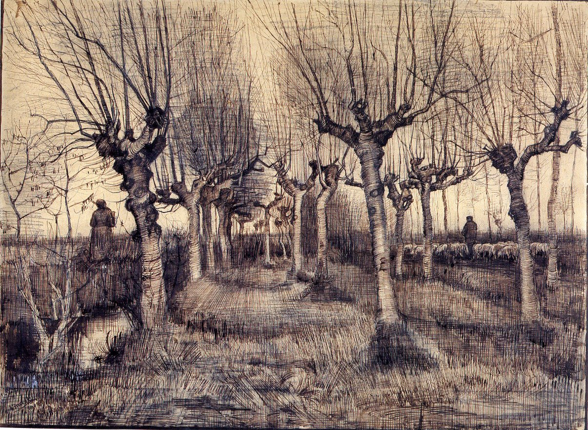 chapter the nineteenth century iii history of drawing 6 44 vincent van gogh pollard birches 1884 pencil pen and