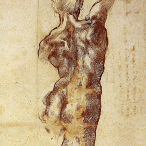 3-12 Michelangelo, A Male Figure Seen from Behind(detail),ca. 1504. Pen and ink over some black chalk, 40.9 x 28.5 cm. Casa Buonarroti, Florence.